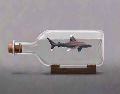 Worlds in Bottles