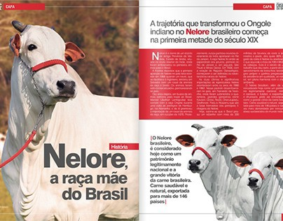 Revista Dispec do Brasil (completa)