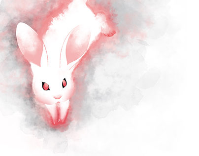 Illustration ○ White Animals