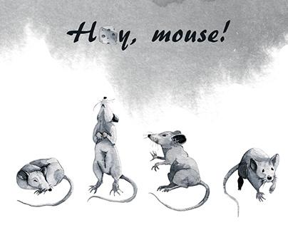 Payne's mice