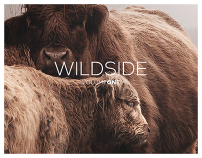 Wildside Volume One: Living Photography