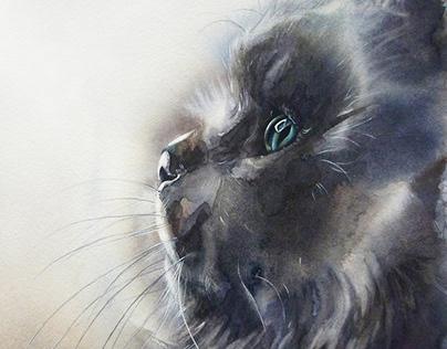 Kitty. Watercolor.