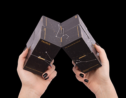 Constellations Reversible Cube