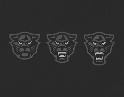 Eye of the Panther — Self-Identity Project