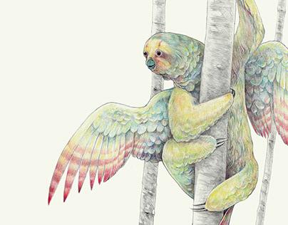 Bradypus harpyja