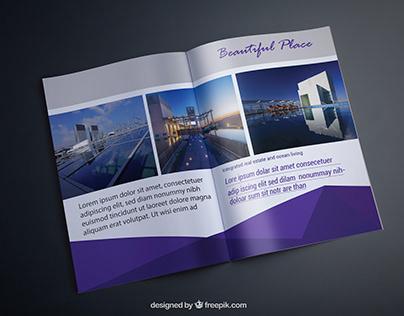 Bi-Fold & catalog Design