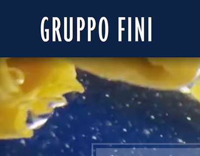 UX/UI Gruppo Fini Corporate website (2015)