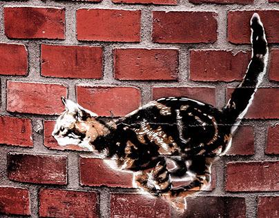 "Interior arts - Street Art stencils in Pub ""Backyard"""