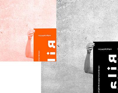 PETER BILAK | TYPOGRAPHIC POSTER