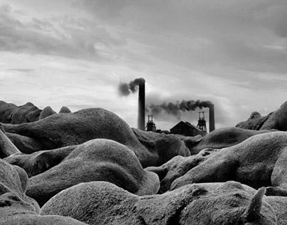 Coal elephants