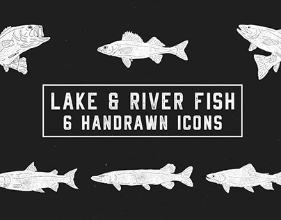 Lake & River Fish: 6 Handrawn Icons