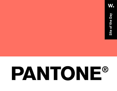 Pantone Living Coral —Color of the Year 2019