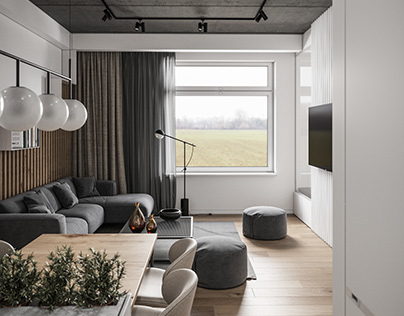 Apartment design for young family