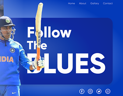Follow The Blues Landing Page Creation