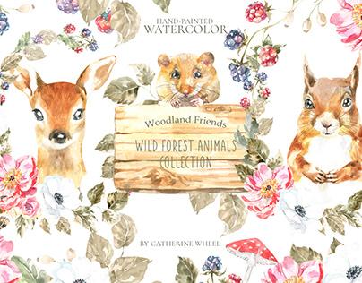 Watercolor Animals Woodland Friends Illustration