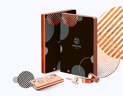 Brandbook(Guideline) for Smartline Company