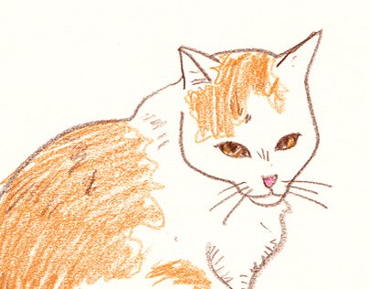 drawing_cat