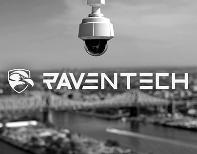 Branding for security systems company RAVENTECH