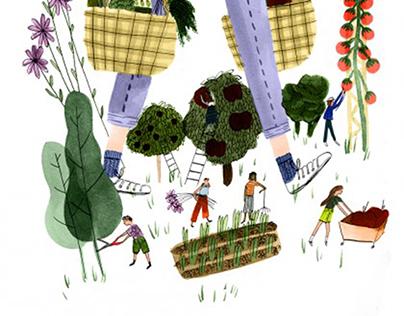 Montecristo Magazine: Summer Farmers Markets