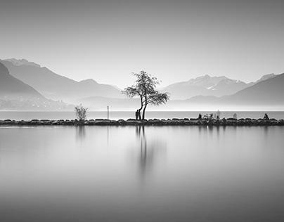 Shores of Silence