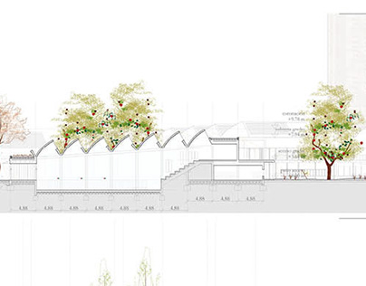 Master Degree in Architecture ·Final Project