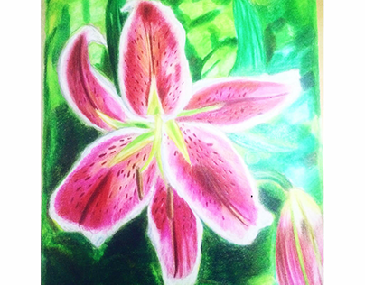 tiger lily flower made with color pencils