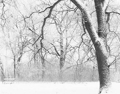 Winter Skizzen