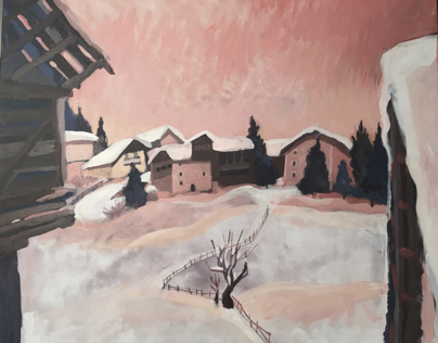 Vista invernale antermoia  #sanmartino valle Badia
