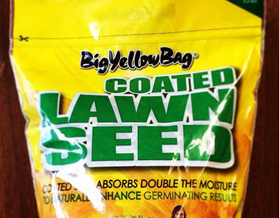BigYellowBag - Package Design