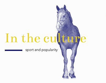 Polo discovery website