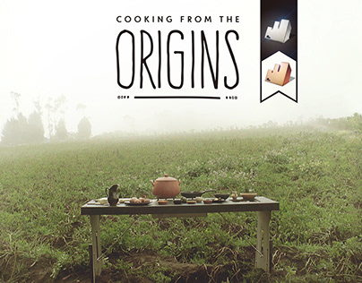 Cooking from the Origins