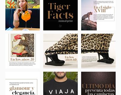 Black Tiger marca, social media, e-commerce