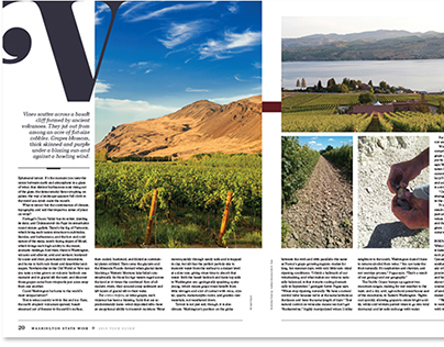 2015 Washington State Wine Guide