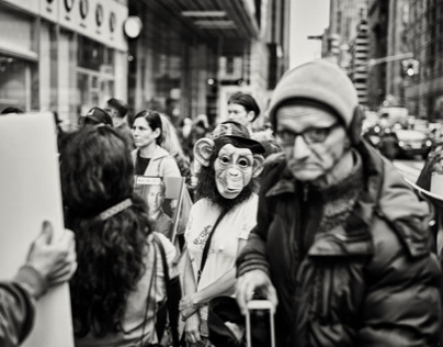Demonstration against animal testing NYC