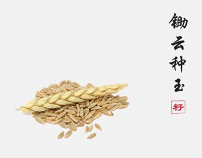 Xing Long A.Co