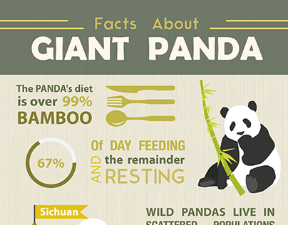 -Infographic- Facts about giant panda