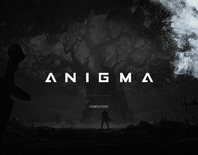 Anigma Computers - Branding and Web Design