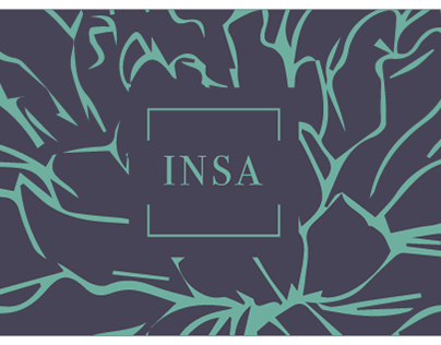 INSA Company Brand direction