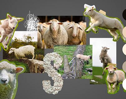 School assignment - sheep