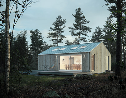 Scandinavian cabins and houses