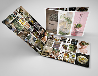 Presentations boards. Olive oil branding (2014 Turkey)