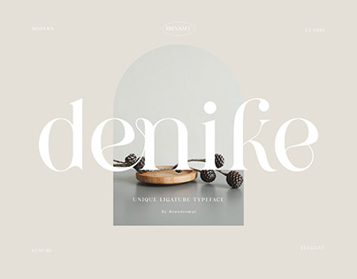 Denike || Stylish Modern Serif