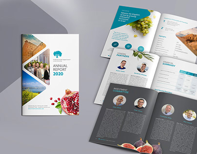 Annual Report 2020 Design and layout