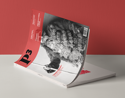 P3 - printed version
