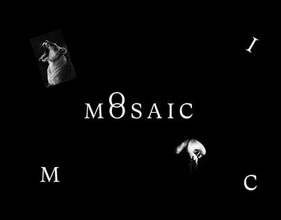 MOSAIC-folio website