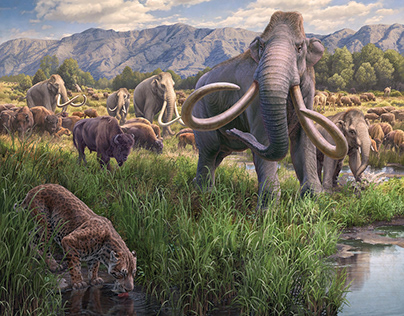 Ice Age Fossils State Park | Mammothsat the Springs