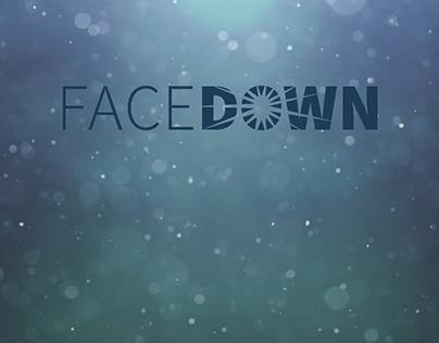 FaceDown Leadership Development