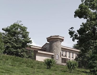 Villa in the village