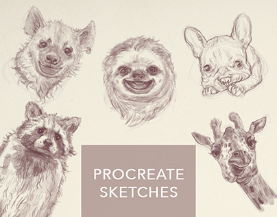 funny animals sketches