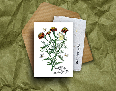 Illustrated Greeting Cards with seeds